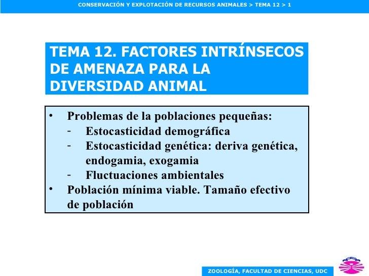TEMA 12. FACTORES INTRÍNSECOS DE AMENAZA PARA LA DIVERSIDAD ANIMAL <ul><li>Problemas de la poblaciones pequeñas: </li></ul...