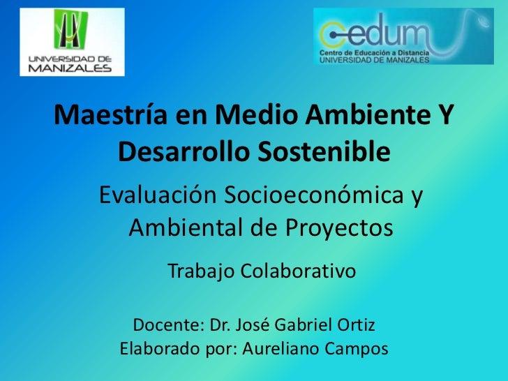 Maestría en Medio Ambiente Y Desarrollo Sostenible<br />Evaluación Socioeconómica y Ambiental de Proyectos<br />Trabajo Co...