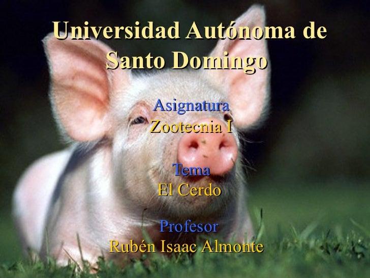 Universidad Autónoma de Santo Domingo  Asignatura Zootecnia I Tema El Cerdo   Profesor  Rubén Isaac Almonte