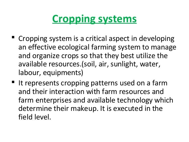 cropping systems Cropping systems blog   aphids on the upswing but make they are present before you spray aug 21, 2018 sorghum progressing well through many areas of the state but sugarcane aphids are looming jul 06, 2018 winter canola and recent.