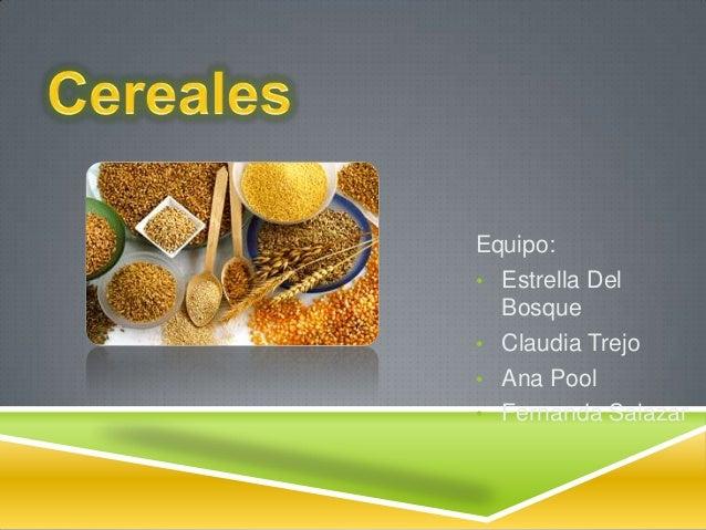 Equipo: • Estrella Del Bosque • Claudia Trejo • Ana Pool • Fernanda Salazar