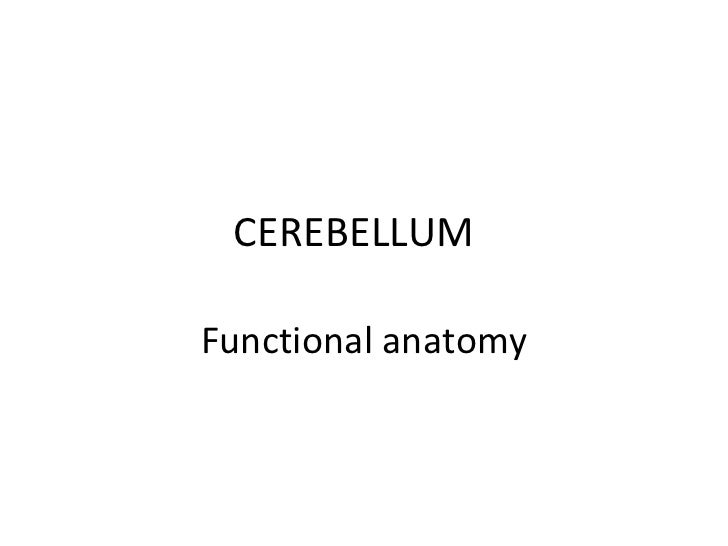 CEREBELLUMFunctional anatomy