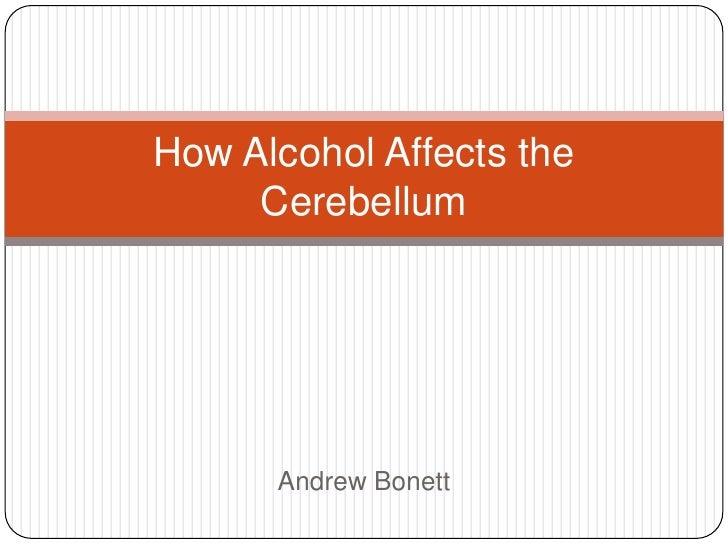 How Alcohol Affects the Cerebellum<br />Andrew Bonett<br />