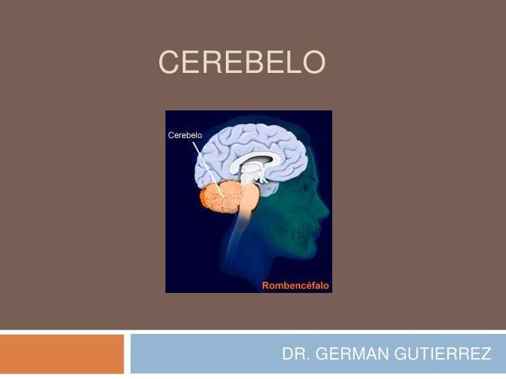 CEREBELO     DR. GERMAN GUTIERREZ