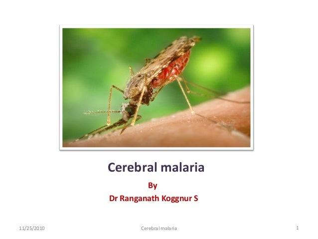 Cerebral malaria                      By             Dr Ranganath Koggnur S11/25/2010          Cerebral malaria   1