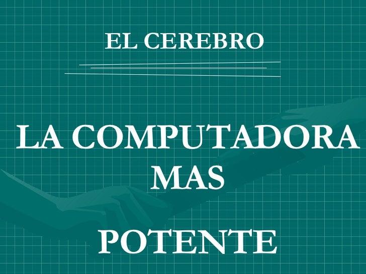 EL CEREBRO   LA COMPUTADORA MAS POTENTE