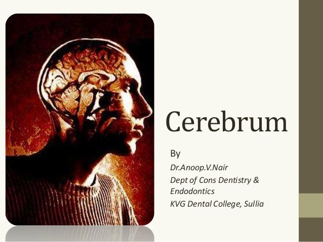 Cerebrum By Dr.Anoop.V.Nair Dept of Cons Dentistry & Endodontics KVG Dental College, Sullia