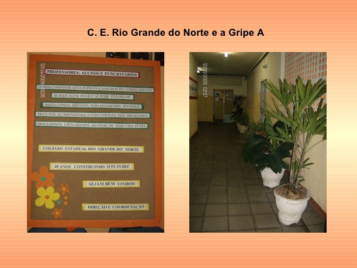 C. E. Rio Grande do Norte e a Gripe A