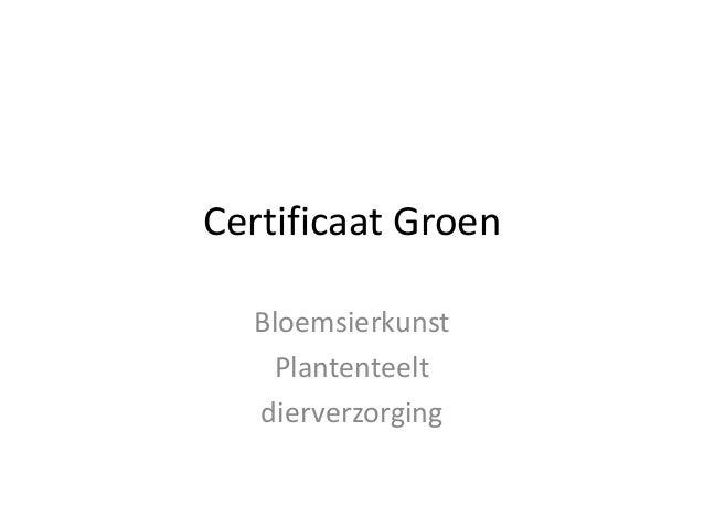 Certificaat groen PRO