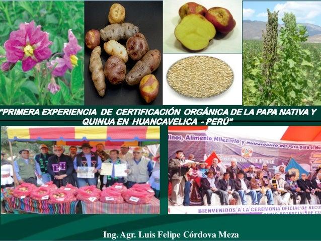 Certificación orgánica de la  papa nativa y quinua en hvca.
