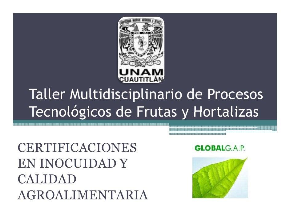 Taller Multidisciplinario de Procesos  Tecnológicos de Frutas y Hortalizas  CERTIFICACIONES EN INOCUIDAD Y CALIDAD AGROALI...