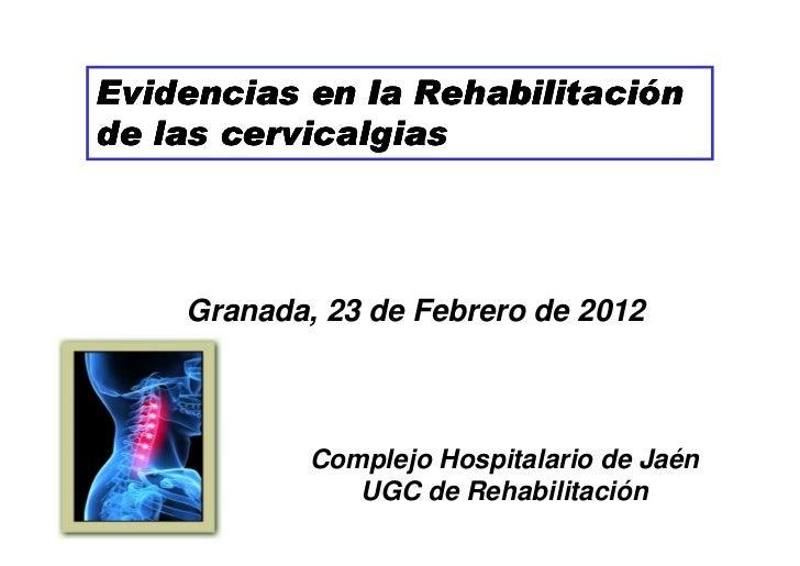 Evidencias en la Rehabilitación                 Rehabilitacióde las cervicalgias    Granada, 23 de Febrero de 2012        ...