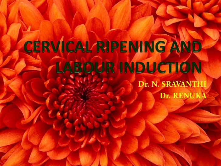 Cervical ripening and labour induction