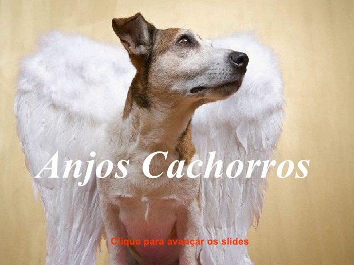 Anjos Cachorros Clique para avançar os slides