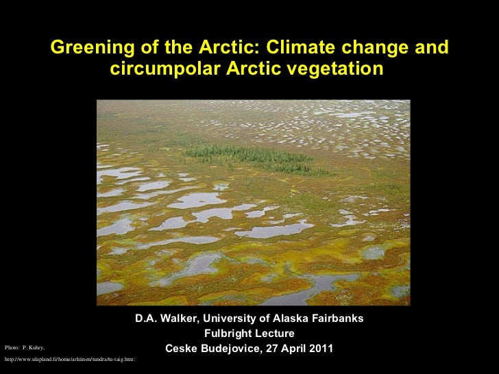 Greening of the Arctic: Climate change and circumpolar Arctic vegetation