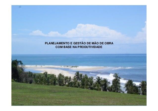 PLANEJAMENTO E GESTÃO DE MÃO DE OBRA COM BASE NA PRODUTIVIDADE