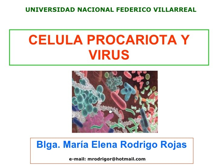 Ceua procariote y virus