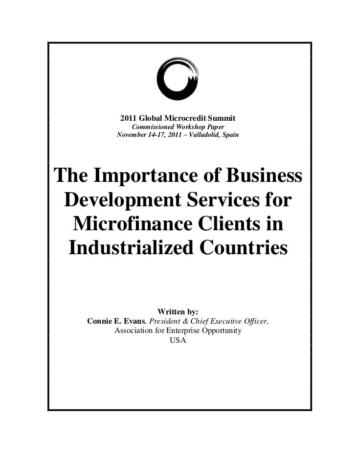 The Importance of Business Development Services for Microfinance Clients in Industrialized Countries