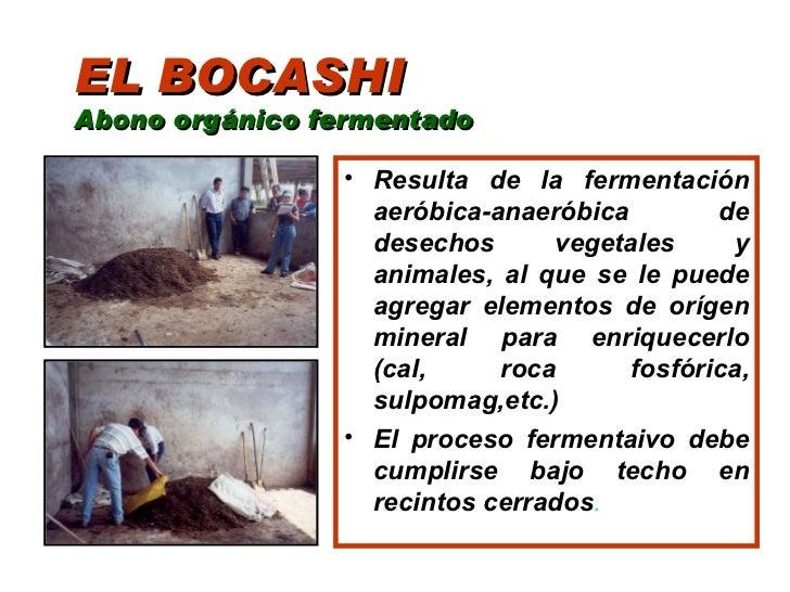 Abonos organicos - Abono organico para plantas ...