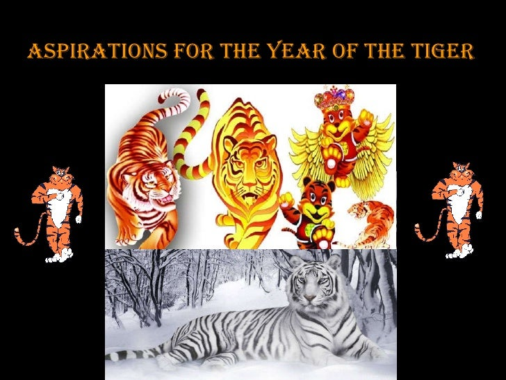 Aspirations For The Year Of The Tiger