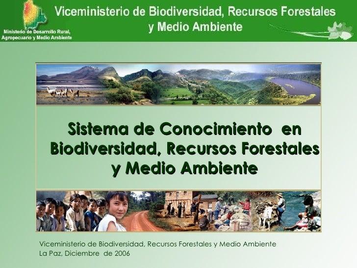 Viceministerio de Biodiversidad, Recursos Forestales y Medio Ambiente La Paz, Diciembre  de 2006 VBIOREFORMA Sistema de Co...