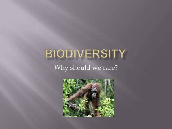 Biodiversity<br />Why should we care?<br />