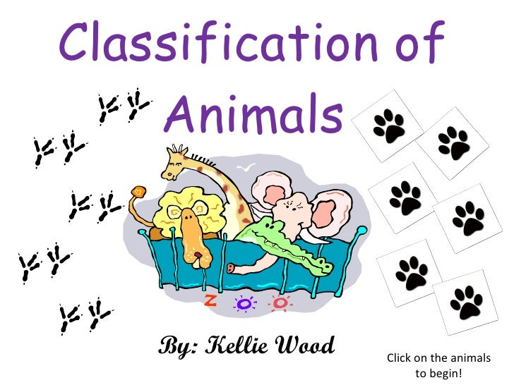 Classification of Animals By: Kellie Wood Click on the animals to begin!