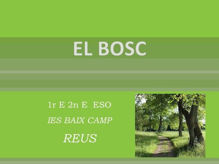 1r E 2n E ESO IES BAIX CAMP     REUS