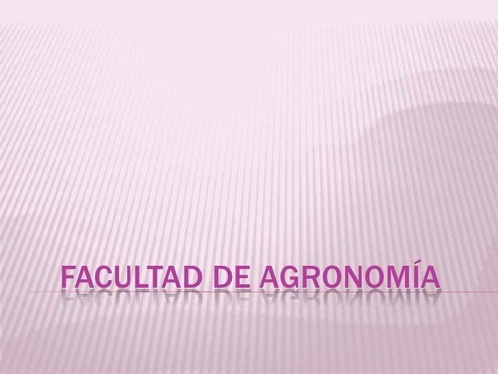 Facultad de agronomía<br />