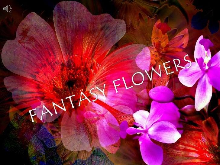 FANTASY FLOWERS<br />