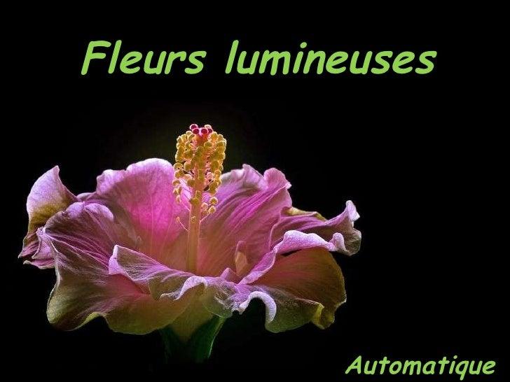 Fleurs lumineuses Automatique