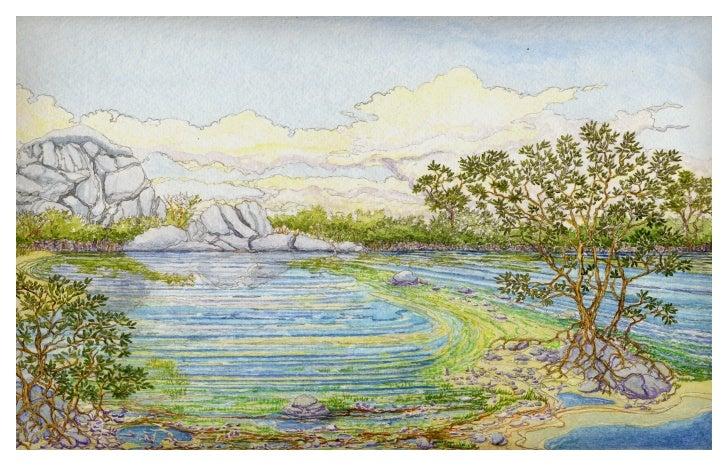 Hansen's Cove - Study 1