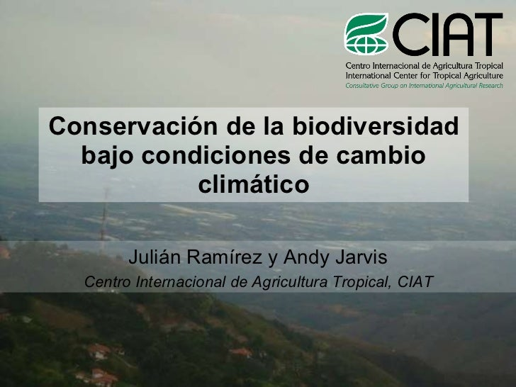 Conservación de la biodiversidad bajo condiciones de cambio climático Julián Ramírez y Andy Jarvis Centro Internacional de...