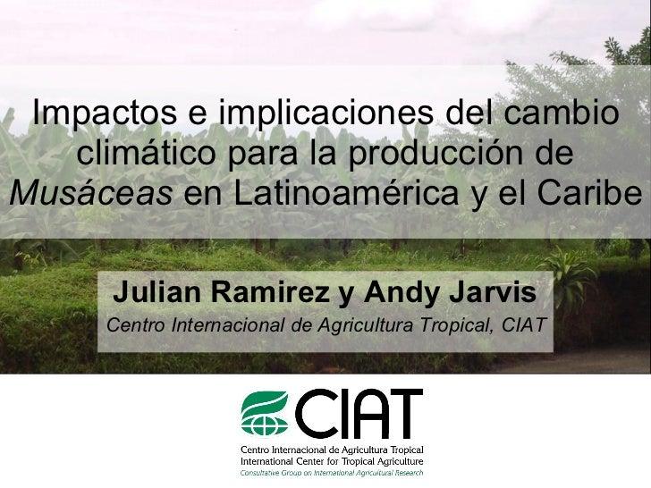 Julian R - Impactos e implicaciones del cambio climatico en la produccion de musaceas de Latinoamerica y el Caribe, Costa Rica Nov 2009