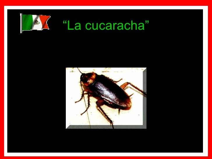 """"""" La cucaracha"""""""