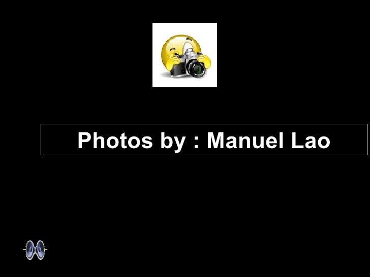 Photos by : Manuel Lao
