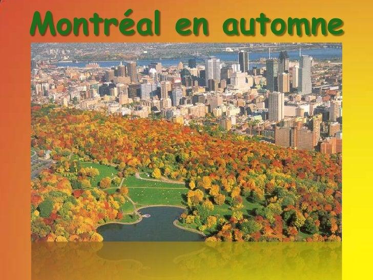 Montréal en automne <br />