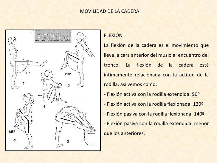 Movilidad Articulaciones