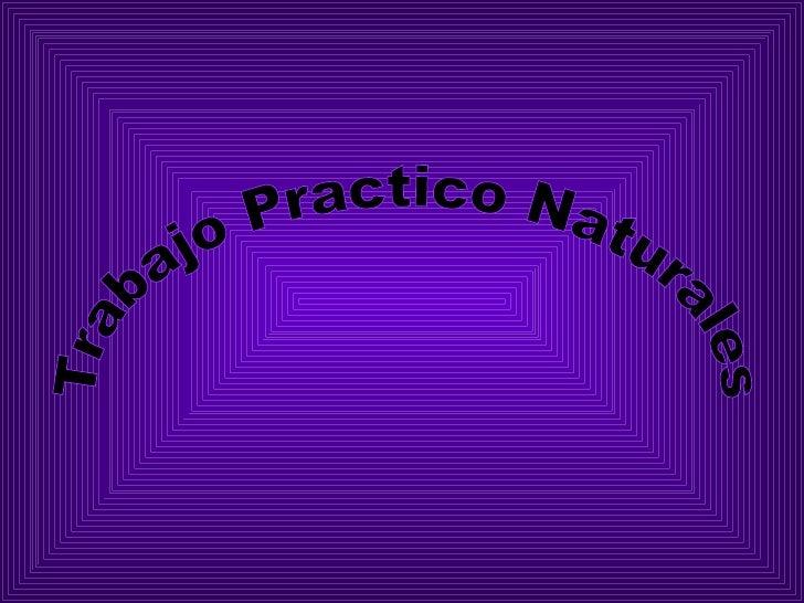 C:\Fakepath\Naturales Repollo