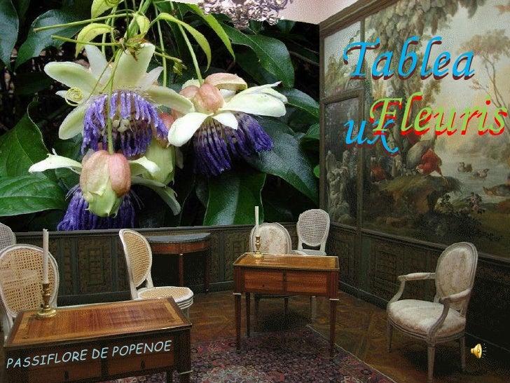 Tableaux fleuris