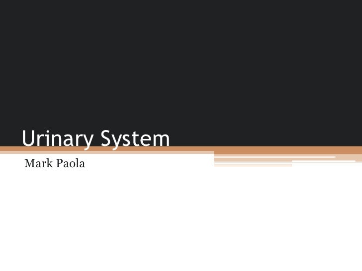 Urinary System<br />Mark Paola<br />