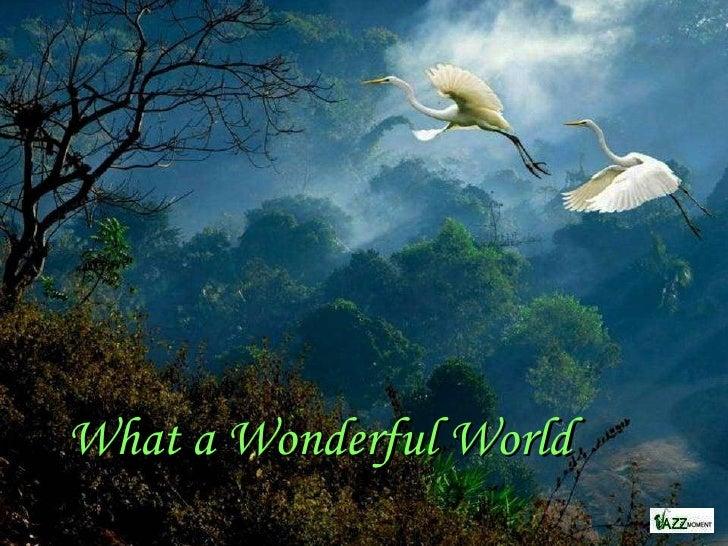 What A Wonderful World Beautiful Mother Nature With Beautiful Music