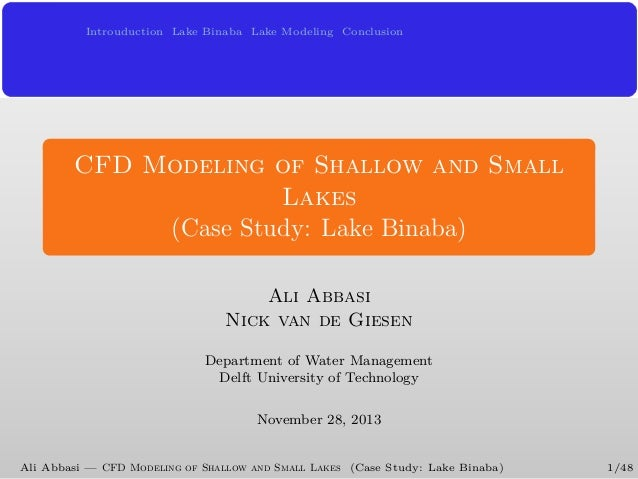 CFD Modeling of Shallow and Small Lakes (Case Study: Lake Binaba)