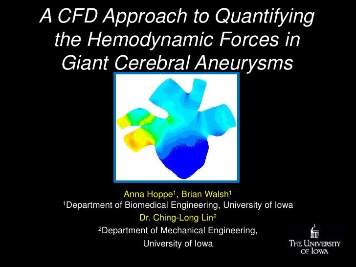 A CFD Approach to Quantifying the Hemodynamic Forces in Giant Cerebral Aneurysms <br />Anna Hoppe1, Brian Walsh1 1Departme...