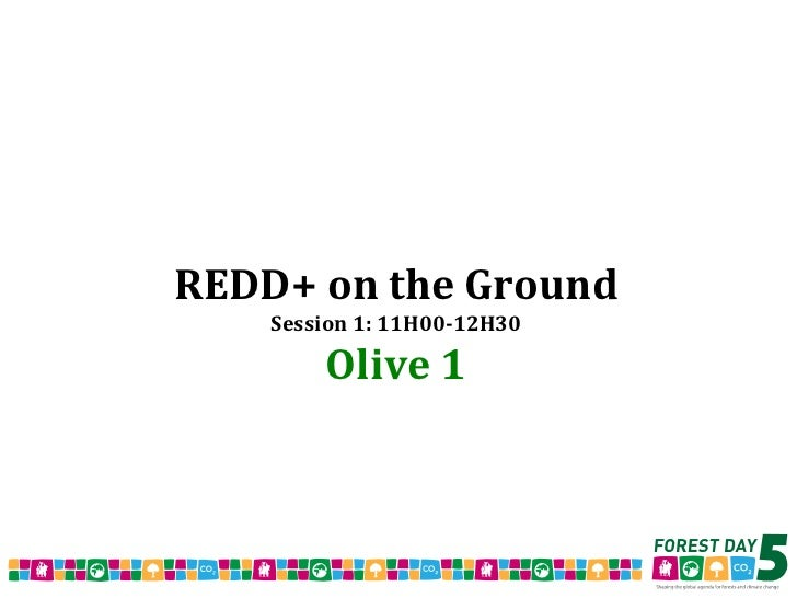 REDD+ on the Ground Session 1: 11H00-12H30 Olive 1