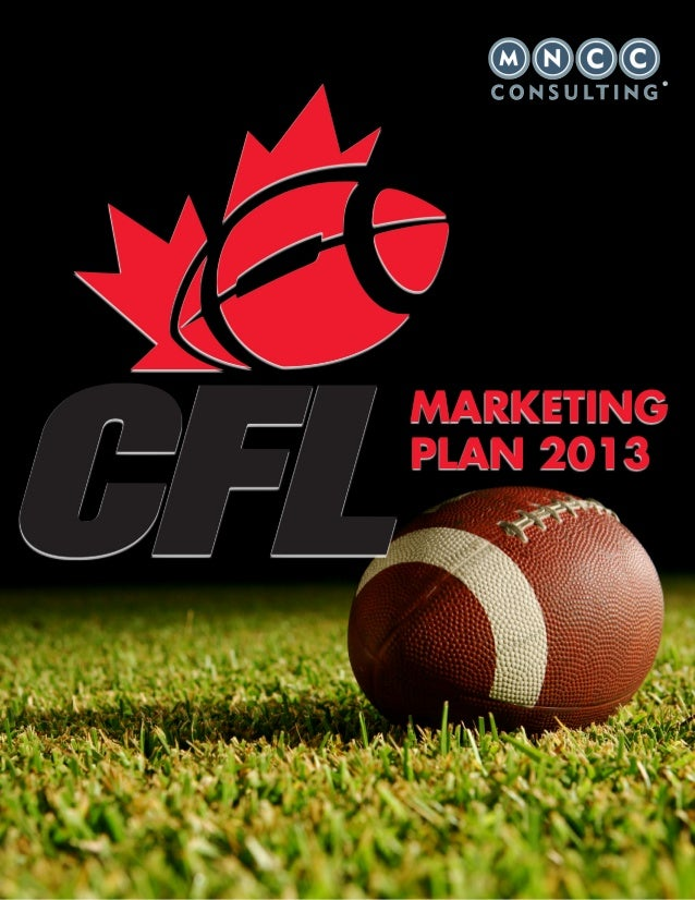 MARKETINGPLAN 2013