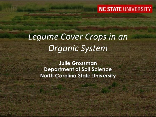 Legume Cover Crops in an    Organic System         Julie Grossman   Department of Soil Science  North Carolina State Unive...