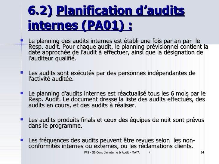 audit programme for statutory audit pdf