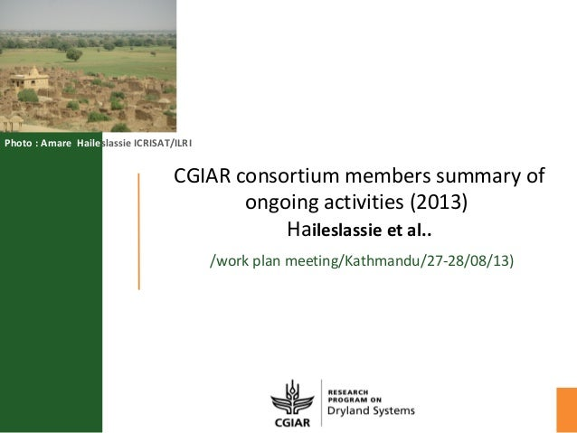 CGIAR consortium members summary of ongoing activities (2013) Haileslassie et al.. /work plan meeting/Kathmandu/27-28/08/1...