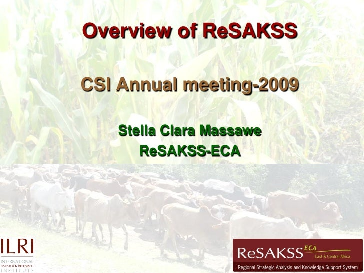 Overview of ReSAKSS  CSI Annual meeting-2009     Stella Clara Massawe       ReSAKSS-ECA